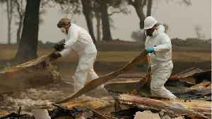 DNA Specialists Hired To Help Identify Dead From California Wildfire [Video]