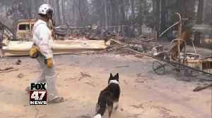 More than 600 now missing as death toll grows to 63 in Northern California's Camp Fire [Video]