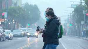 Bad Air Across Bay Area Scuttles Outdoor Plans for Tourists and Locals [Video]