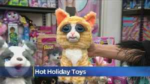 Hot Holiday Toys For Kids This Season [Video]