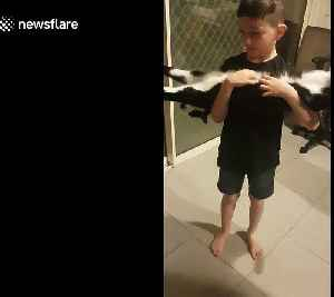 Adorable rescue cat 'planks' when human brother scratches its tummy [Video]