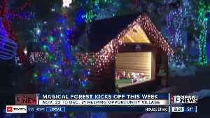 Magical Forest kicks off this week [Video]