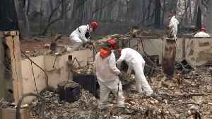As Number of Dead, Missing Soars, FEMA Struggles to Shelter Wildfire Evacuees [Video]