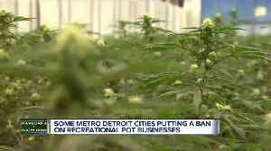 Cities work to come up with marijuana policies in wake of vote to legalize [Video]
