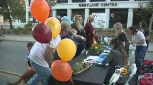 Thousand Oaks Volunteers Hold Charity Event For Borderline Shooting Victims As Community Shows Outpouring Of Support [Video]
