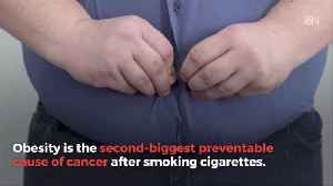How Obesity Can Cause Cancer [Video]