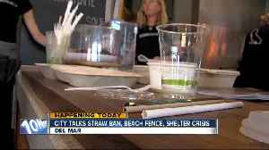 Del Mar City Council to discuss issues including possible straw ban [Video]