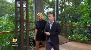Holly Willoughby Gets 'I'm A Celebrity' Introduction From Dec [Video]