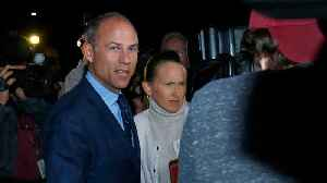 Michael Avenatti Defends Himself Against Restraining Order From Actress [Video]