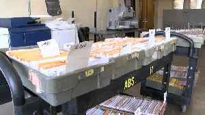 Absentee ballots set to be counted in Erie Countyi [Video]