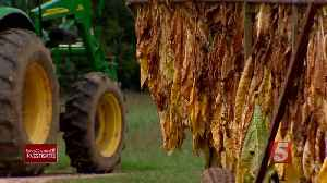 Controversial weed killer may force some farmers out of business [Video]