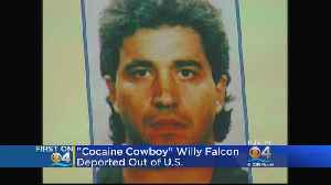 Cocaine Cowboy Willy Falcon Deported To Dominican Republic [Video]