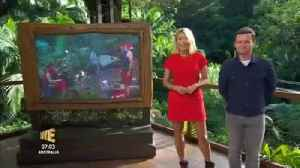 Holly Willoughby mimics This Morning job in I'm A Celeb gag [Video]