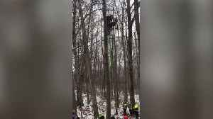 Hunter Rescued After Becoming Trapped Hanging Upside Down from Tree Stand [Video]
