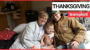 Mother saves her sick toddler's life by donating her kidney [Video]