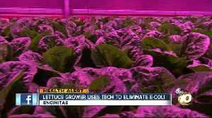 Local business develops technology that could prevent outbreaks in their crops [Video]