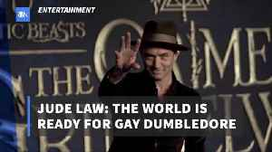 Jude Law Argues For A Gay Dumbledore [Video]