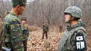 North and South Korean soldiers meet to reconnect a road in DMZ [Video]