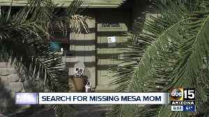 Mesa police looking for missing pregnant woman [Video]