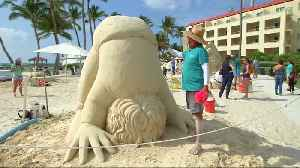 Artists build sand sculptures at Florida competition [Video]