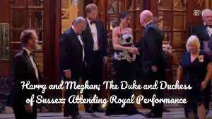 Prince Harry And Duchess Meghan On A Date [Video]