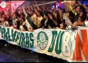 Chanting Brazilian Soccer Fans Take Over Dublin Street Ahead of Crunch Match [Video]