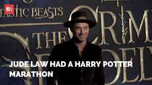 Jude Law Did Some Harry Potter Binge Watching [Video]
