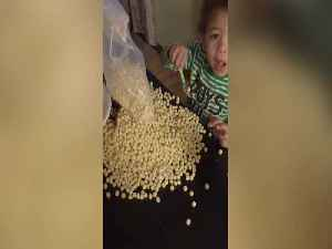 This Kid is Serious about Cereal [Video]
