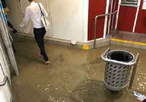 Commuters Remove Shoes and Socks to Wade Through Flooded Lewisham Station [Video]