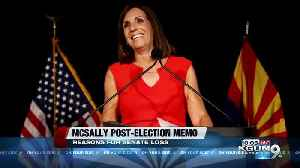 Arizona GOP memo blames Trump, McCain, big spending on McSally's Senate loss [Video]