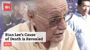 Stan Lee Cause Of Death [Video]