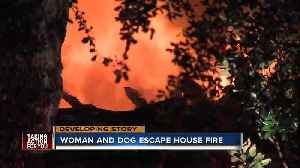 Woman and dog escape house fire in Citrus Park [Video]