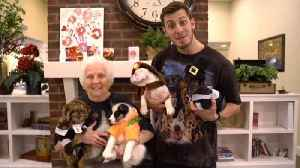 Man and His 92-Year-Old Granny Surprise Alzheimer's Patients With Puppies [Video]
