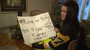 Sign at Hockey Game Helps Woman Find a Kidney Donor [Video]