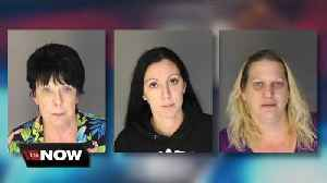 Police bust major retail fraud ring allegedly responsible for years of crime [Video]
