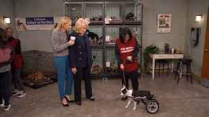 Murphy Brown - The Wheels on the Dog Go Round and Round (Sneak Peek 3) [Video]