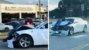 Man Clings to Hood of Car After Driver Tries to Flee From Crash: Cops [Video]