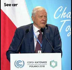 David Attenborough Says Our Time Is Running Out [Video]