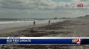 New details released on red tide [Video]