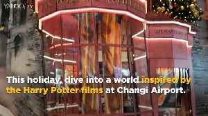Harry Potter grips Changi Airport [Video]