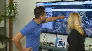 Technology From San Francisco Drone Company Helps In Camp Fire Recovery [Video]