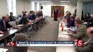 Tennessee Senate GOP renominates speaker, picks new leader [Video]