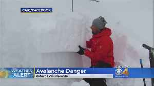 Avalanche Experts Tracked 54 Avalanches In A Matter Of Days [Video]
