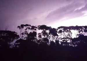Lightning Storm Puts on Show in Western Australia [Video]