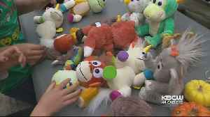 Bay Area Woman's 'Animoodles' Toys Top Holiday Shopping Lists [Video]
