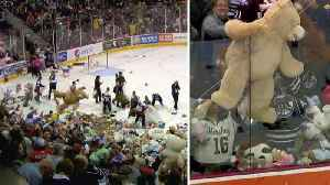 35,000 Teddy Bears Are Tossed Onto Pennsylvania Hockey Rink for a Good Cause [Video]