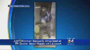 Man Accused Of Sexually Assaulting Tourist At Miami Springs Hotel [Video]