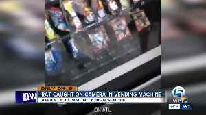 Video shows rat inside vending machine at Delray Beach high school [Video]