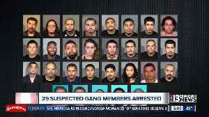 29 alleged gang members arrested [Video]