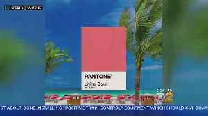2019 Color Of The Year [Video]